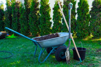 Affordable Local Gardener/Gardeners